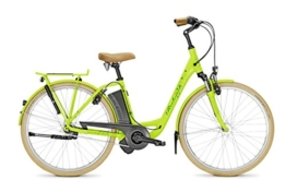 E-Bike Raleigh DOVER IMPULSE 7R HS 7G 26' 11Ah 36V green - Rücktrittbremse -