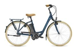 E-Bike Raleigh DOVER IMPULSE 7R HS 7G 26' 11Ah 36V Rücktritt -
