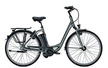 E-Bike Raleigh DOVER IMPULSE 8 HS 28' 8G 14,5AH 36V Wave in grey matt, Rahmenhöhen:50;Farben:Carbonitegrey matt -