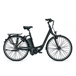 E-Bike Raleigh DOVER IMPULSE 8 HS 28' 8G 17AH 36V Wave in black matt, Rahmenhöhen:46;Farben:Magicblack matt -