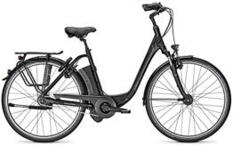 E-Bike Raleigh DOVER IMPULSE 8 HS 8G 28' 14,5AH/36V Tiefeinsteiger in black matt, Rahmenhöhen:46;Farben:Magicblack matt -