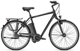 E-Bike Raleigh DOVER IMPULSE 8 HS Herren 8-Gang 36V / 17Ah Freilauf Magicblack matt 28' div. Rh, Rahmenhöhen:60;Farben:Magicblack matt -