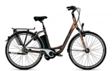 E-Bike Raleigh DOVER IMPULSE 8R HS Wave 11 AH bronze matt/copper matt, Rahmenhöhen:46 cm -