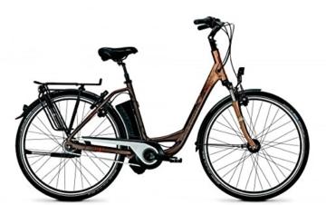 E-Bike Raleigh DOVER IMPULSE 8R HS Wave 11 AH bronze matt/copper matt, Rahmenhöhen:46 cm -