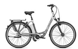 E-Bike Raleigh DOVER IMPULSE 8R XXL Wave 17AH in scotch/grey, Rahmenhöhe:46 -