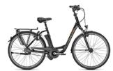 E-Bike Raleigh DOVER IMPULSE R CLUB 26' 8G 17Ah Rücktritt -