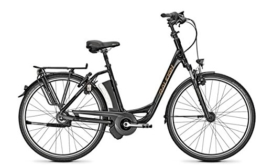 E-Bike Raleigh DOVER IMPULSE R CLUB 26' 8G 17Ah Rücktritt -