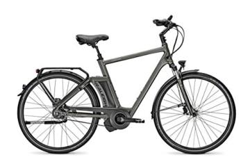 E-Bike Raleigh NEWGATE PREMIUM 8G 28' 17AH 36V Herren in grey matt, Rahmenhöhen:50;Farben:Carbonitegrey matt -