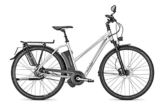E-Bike Raleigh STOKER IMPULSE S11 Trapez 17AH in silver, Rahmenhöhe:50 -