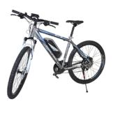 Fischer Herren E-bike MTB Proline Evo - Shimano 24 Gang Deore, Matt Grau, 27.5, 19029 -
